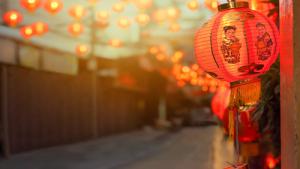 a Chinese lantern displayed on Chinese New Year